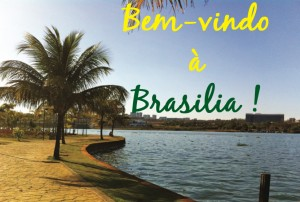 guide_design_architecture_Brasilia
