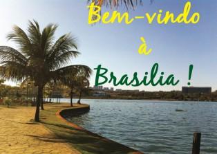 guide_design_architecture_Brasilia
